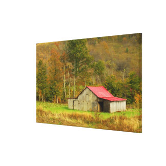 North America USA North Carolina rural Gallery Wrap Canvas