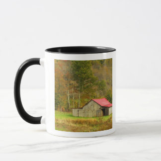 North America, USA, North Carolina, rural Mug