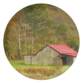 North America, USA, North Carolina, rural Plate