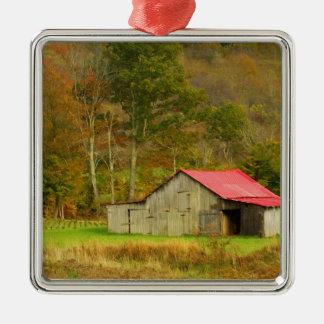 North America, USA, North Carolina, rural Silver-Colored Square Decoration