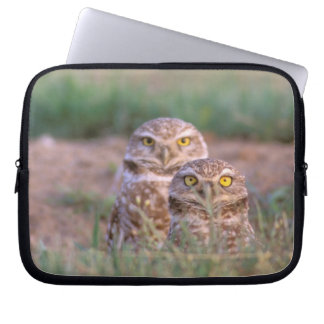 North America, USA, Oregon. Burrowing Owls 2 Laptop Sleeve