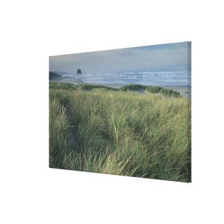 North America, USA, Oregon, Canon Beach, Stretched Canvas Print