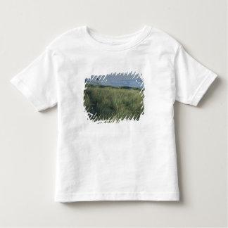 North America, USA, Oregon, Canon Beach, Toddler T-Shirt