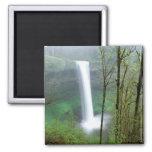 North America, USA, Oregon, Silver Falls State Refrigerator Magnets