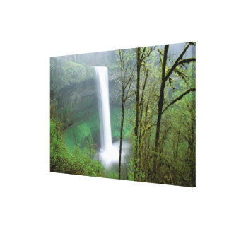 North America, USA, Oregon, Silver Falls State Stretched Canvas Print