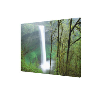 North America, USA, Oregon, Silver Falls State Stretched Canvas Print