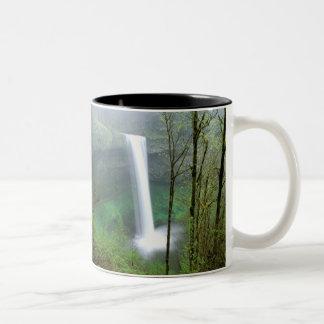 North America, USA, Oregon, Silver Falls State Two-Tone Coffee Mug