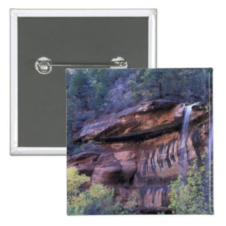 North America, USA, Utah, Zion National Park. 3 15 Cm Square Badge