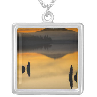 North America, USA, WA, Olympic National Park. Silver Plated Necklace