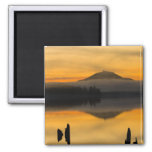 North America, USA, WA, Olympic National Park. Square Magnet