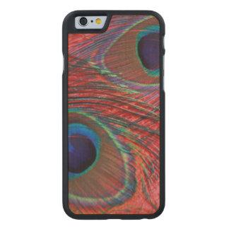 North America, USA, WA, Redmond, Peacock Carved® Maple iPhone 6 Slim Case