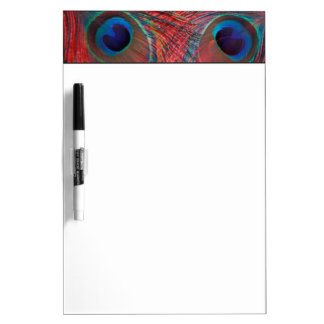 North America, USA, WA, Redmond, Peacock Dry-Erase Boards