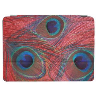 North America, USA, WA, Redmond, Peacock iPad Air Cover