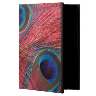 North America, USA, WA, Redmond, Peacock iPad Air Cover