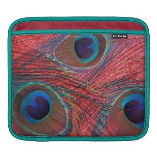 North America, USA, WA, Redmond, Peacock iPad Sleeve