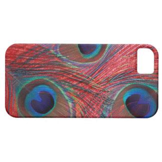 North America, USA, WA, Redmond, Peacock iPhone 5 Case