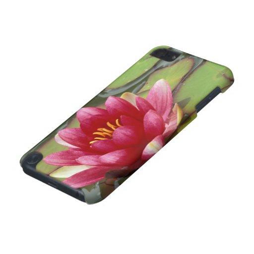 North America, USA, WA, Seattle, Woodland Park 2 iPod Touch (5th Generation) Case