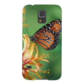 North America, USA, WA, Seattle, Woodland Park 2 Cases For Galaxy S5