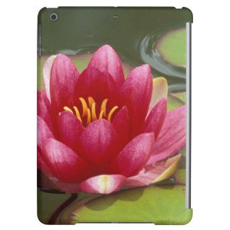 North America, USA, WA, Seattle, Woodland Park 2 Cover For iPad Air