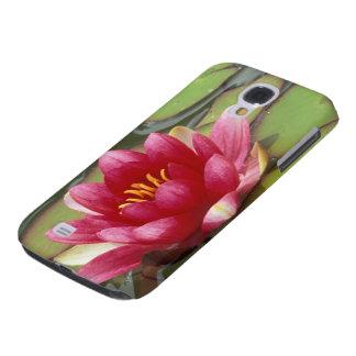 North America, USA, WA, Seattle, Woodland Park 2 Galaxy S4 Case