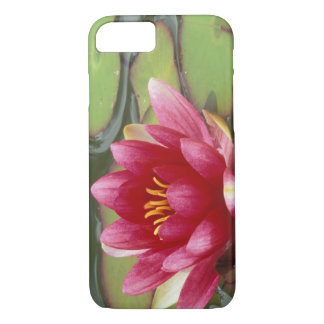 North America, USA, WA, Seattle, Woodland Park 2 iPhone 8/7 Case