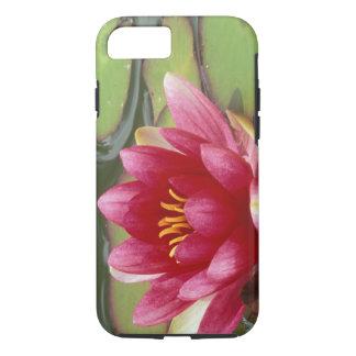North America, USA, WA, Seattle, Woodland Park 2 iPhone 8/7 Case
