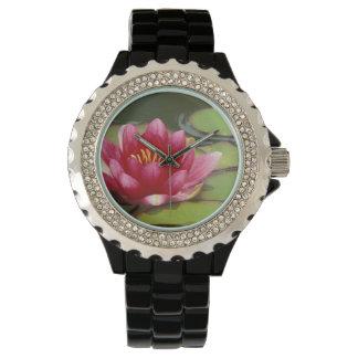 North America, USA, WA, Seattle, Woodland Park 2 Wristwatches