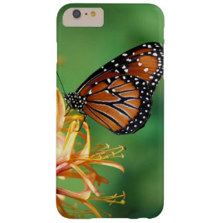 North America, USA, WA, Seattle, Woodland Park Barely There iPhone 6 Plus Case