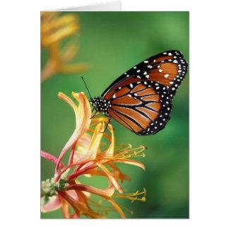 North America, USA, WA, Seattle, Woodland Park Card