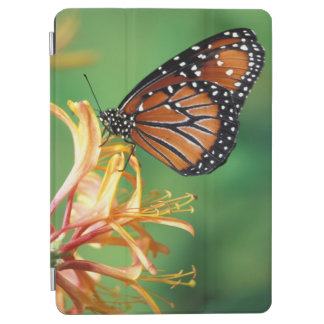 North America, USA, WA, Seattle, Woodland Park iPad Air Cover