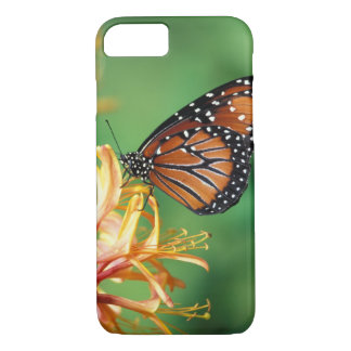 North America, USA, WA, Seattle, Woodland Park iPhone 8/7 Case