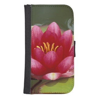 North America, USA, WA, Seattle, Woodland Park Samsung S4 Wallet Case