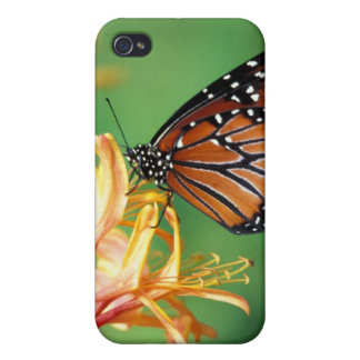 North America, USA, WA, Sele, Woodland Park Covers For iPhone 4