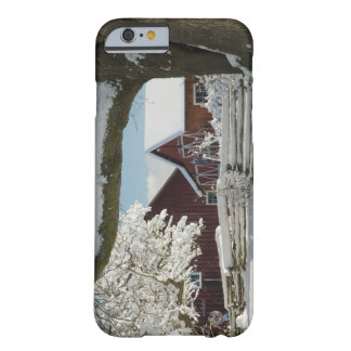 North America, USA, WA, Whidbey Island. 2 Barely There iPhone 6 Case