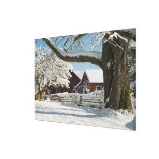 North America, USA, WA, Whidbey Island. 2 Canvas Print