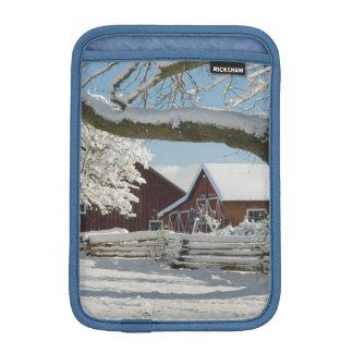 North America, USA, WA, Whidbey Island. 2 iPad Mini Sleeve