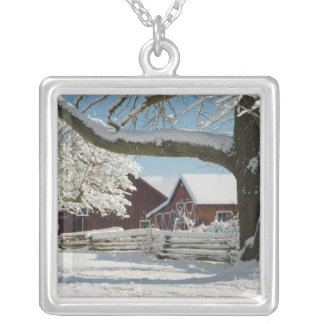 North America, USA, WA, Whidbey Island. 2 Silver Plated Necklace