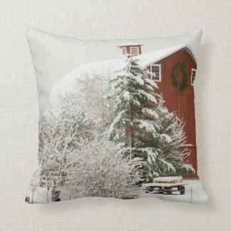 North America, USA, WA, Whidbey Island. Cushion