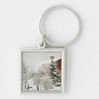North America, USA, WA, Whidbey Island. Silver-Colored Square Key Ring