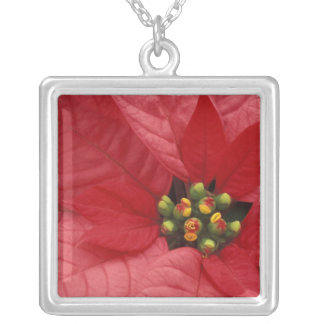 North America, USA, WA, Woodinville, Red 2 Silver Plated Necklace