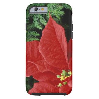 North America, USA, WA, Woodinville, Red Tough iPhone 6 Case