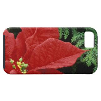 North America, USA, WA, Woodinville, Red iPhone 5 Cover