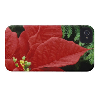 North America, USA, WA, Woodinville, Red Case-Mate iPhone 4 Cases