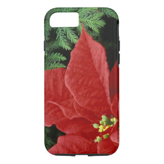 North America, USA, WA, Woodinville, Red iPhone 8/7 Case