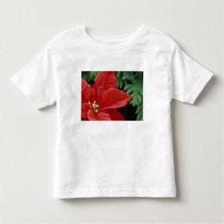North America, USA, WA, Woodinville, Red Toddler T-Shirt