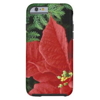 North America, USA, WA, Woodinville, Red Tough iPhone 6 Case