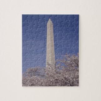 North America, USA, Washington D.C.. Washington Jigsaw Puzzle