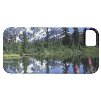 North America, USA, Washington, Heather Meadows iPhone 5 Cover