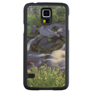 North America, USA, Washington, Mt. Rainier 3 Carved Maple Galaxy S5 Case