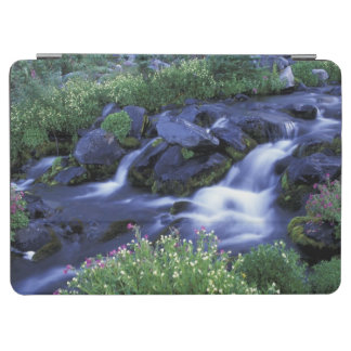 North America, USA, Washington, Mt. Rainier 3 iPad Air Cover